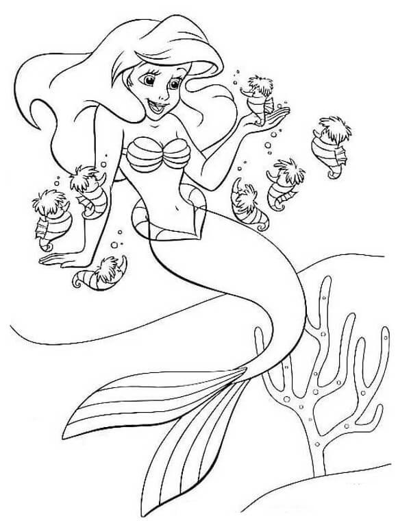 Ariel And Seahorses