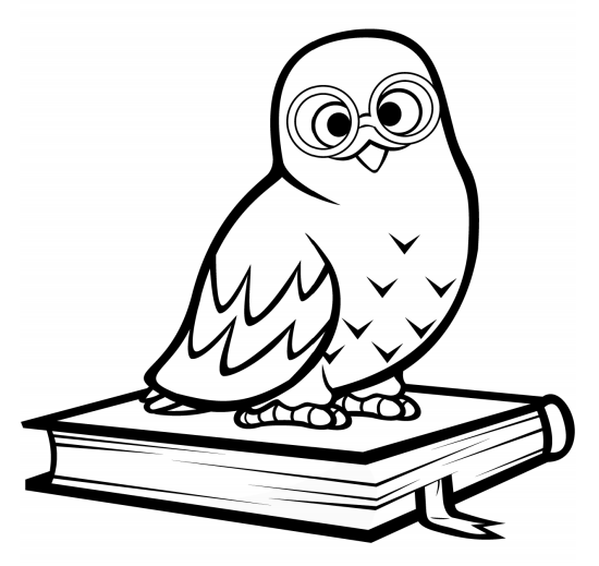 Owl On The Book