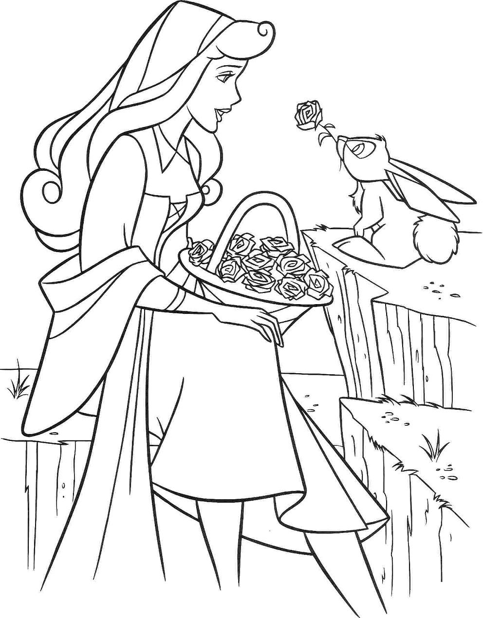 Princess Aurora And Rabbit