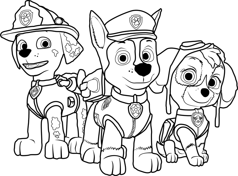 paw patrol coloring  play free coloring game online