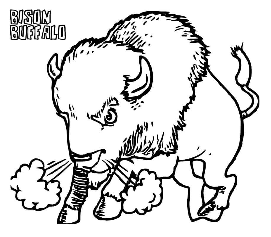 Angry Bison 1