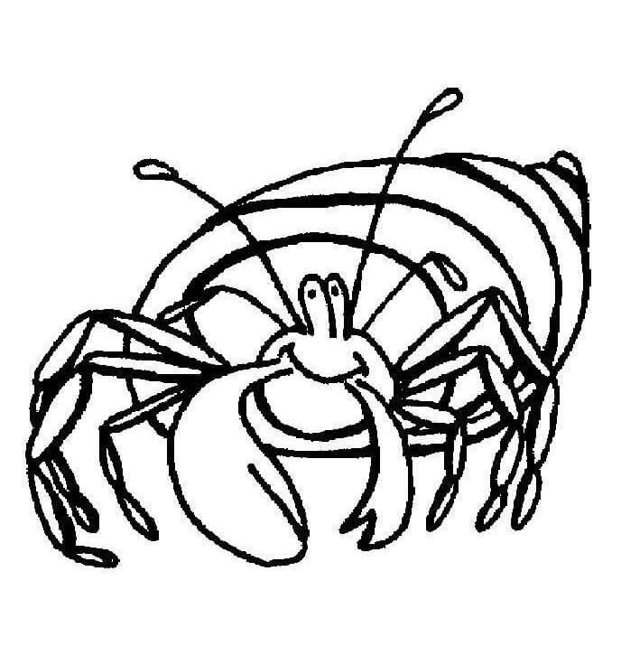 Animated Hermit Crab