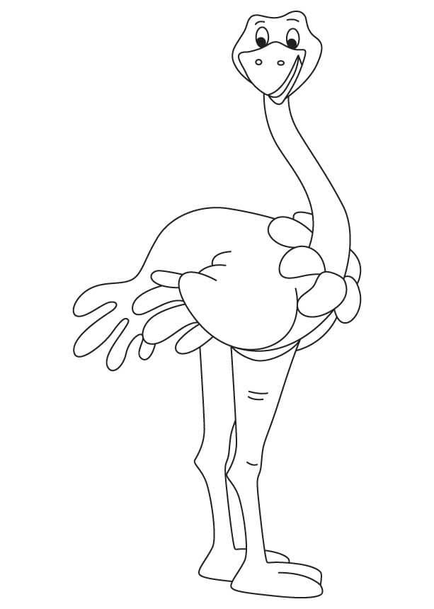 Animated Ostrich