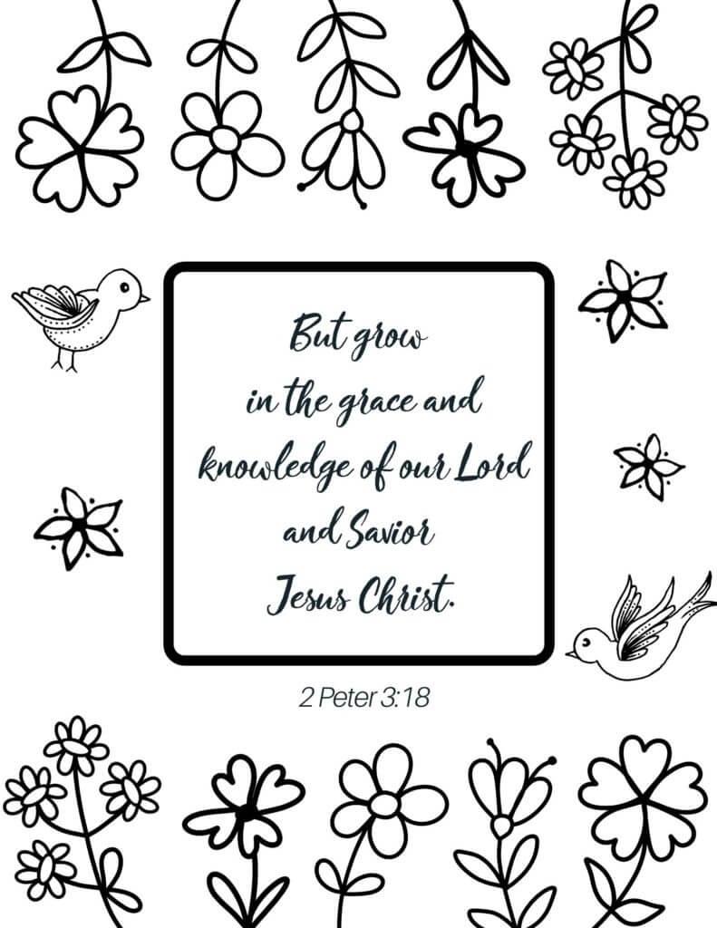 Bible Verse 17