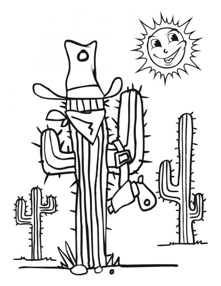 Cactus and Sun