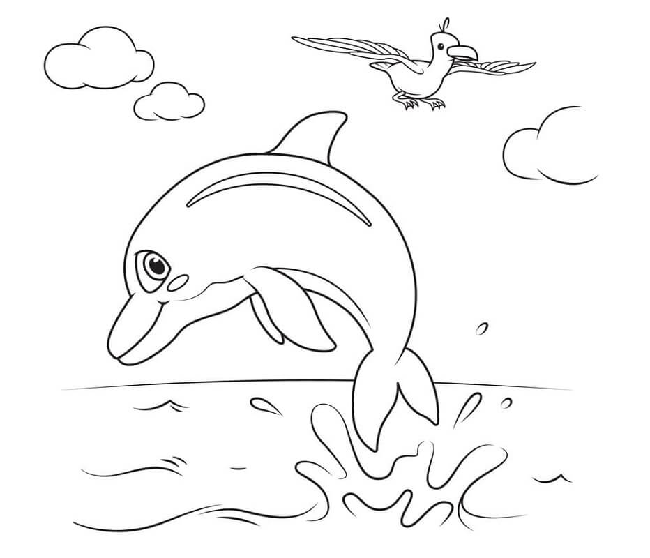Cocomelon Dolphins