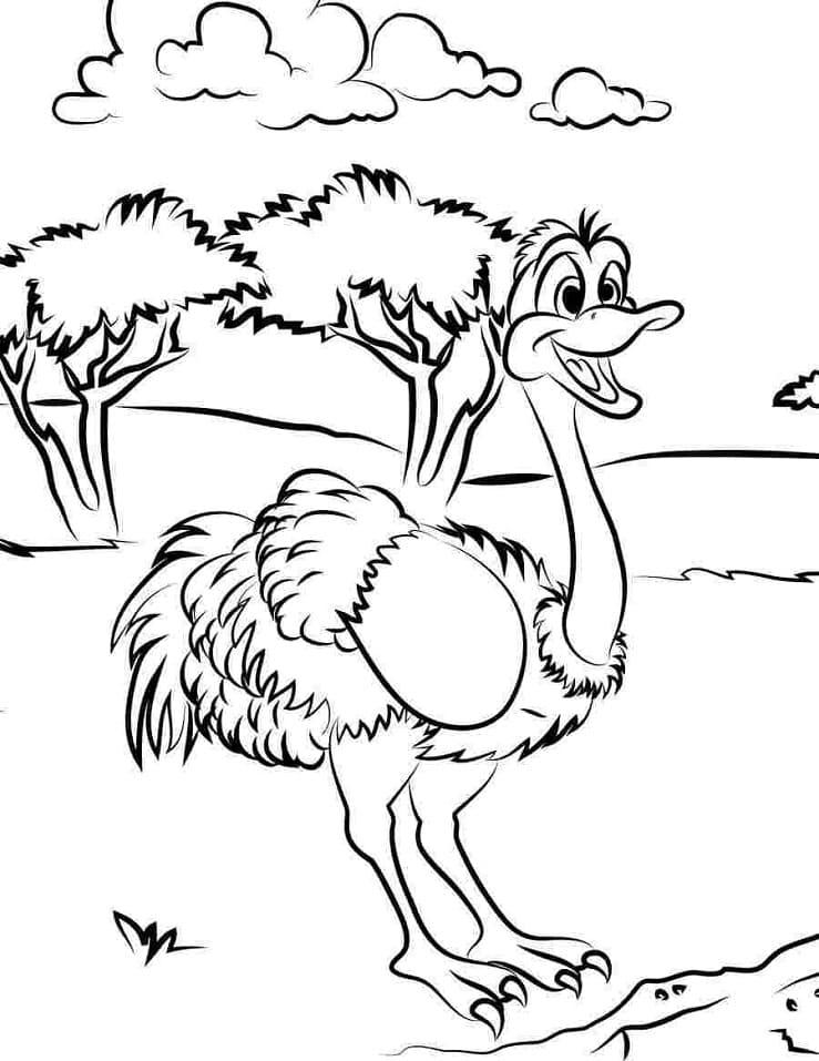 Happy Ostrich