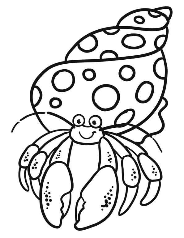 Hermit Crab Smiling