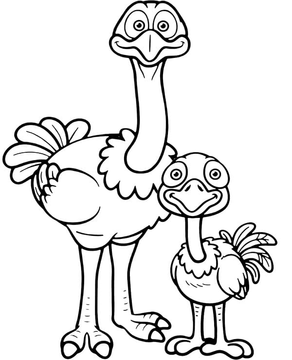Mother and Baby Ostrich