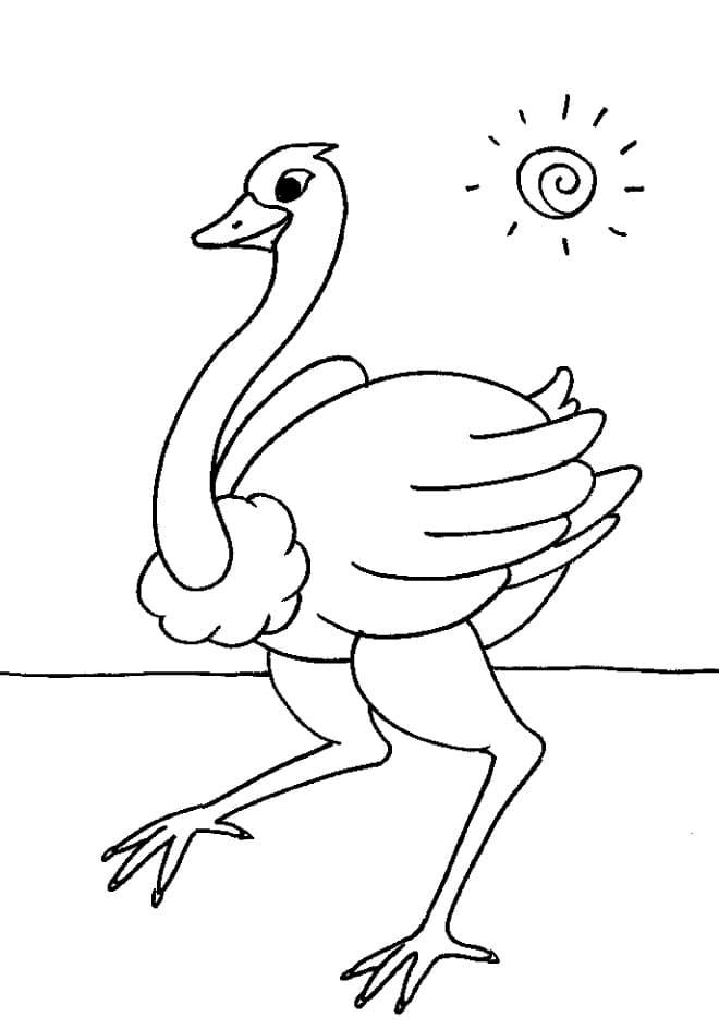 Ostrich and Sun