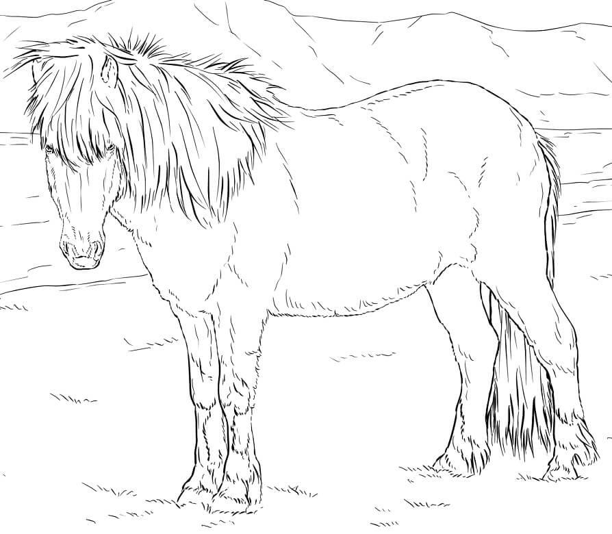 Realistic Icelandic Horse