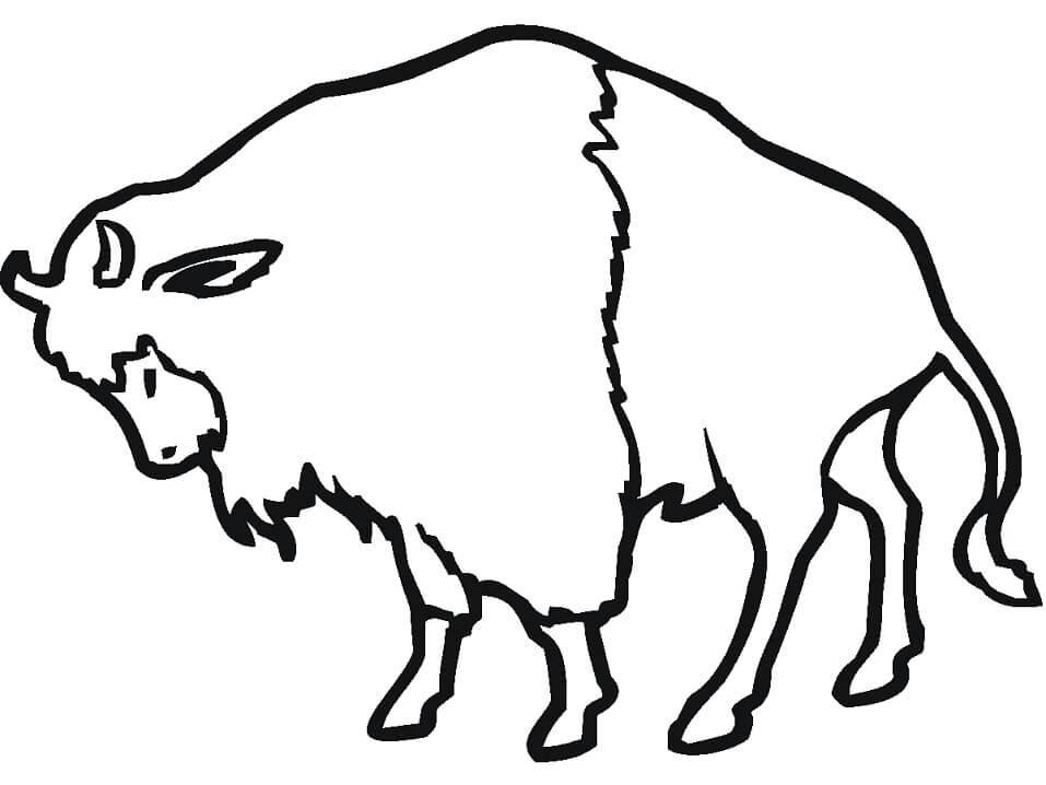 Simple Bison 1