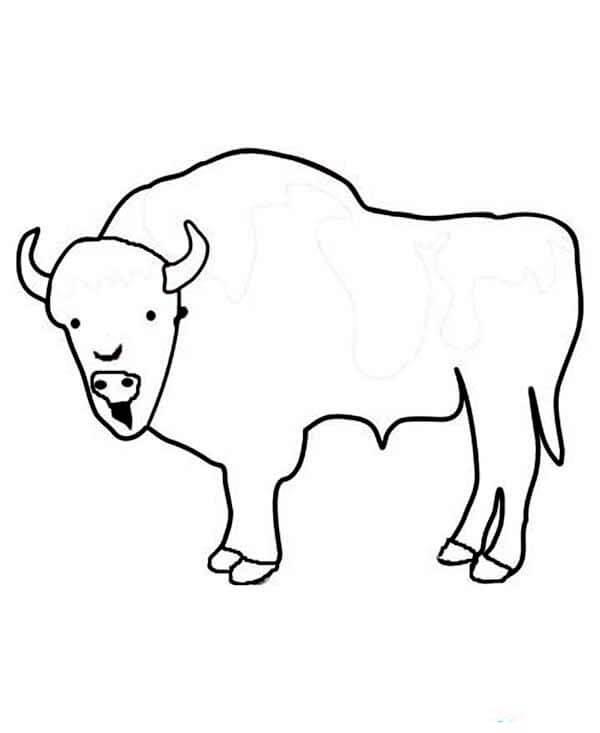 Simple Bison 2